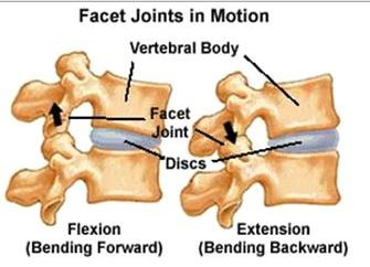 movement of uncovertebral joint