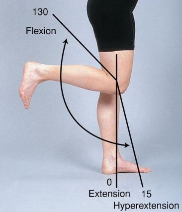 Hyperextension, flexion, extension of Knee degrees