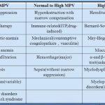 MPV Blood Test