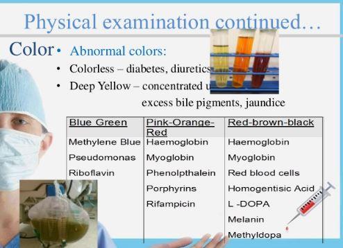 Physical examination of urine examination