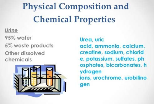 Urinalysis Physical Components and Chemical Analysis