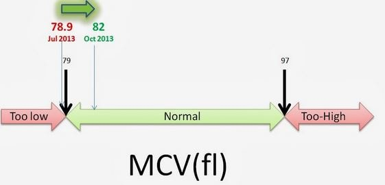 mcv blood test normal low high
